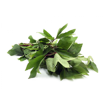 gongura-leaves